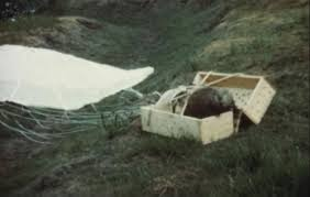 Parachuting Beavers